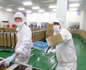 小浜製糖工場の詰場メンバー